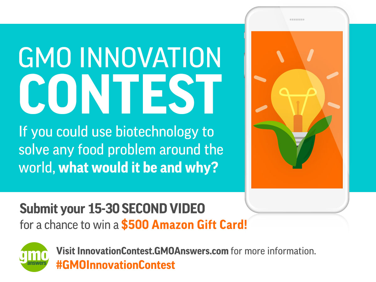 The GMO Innovation Contest