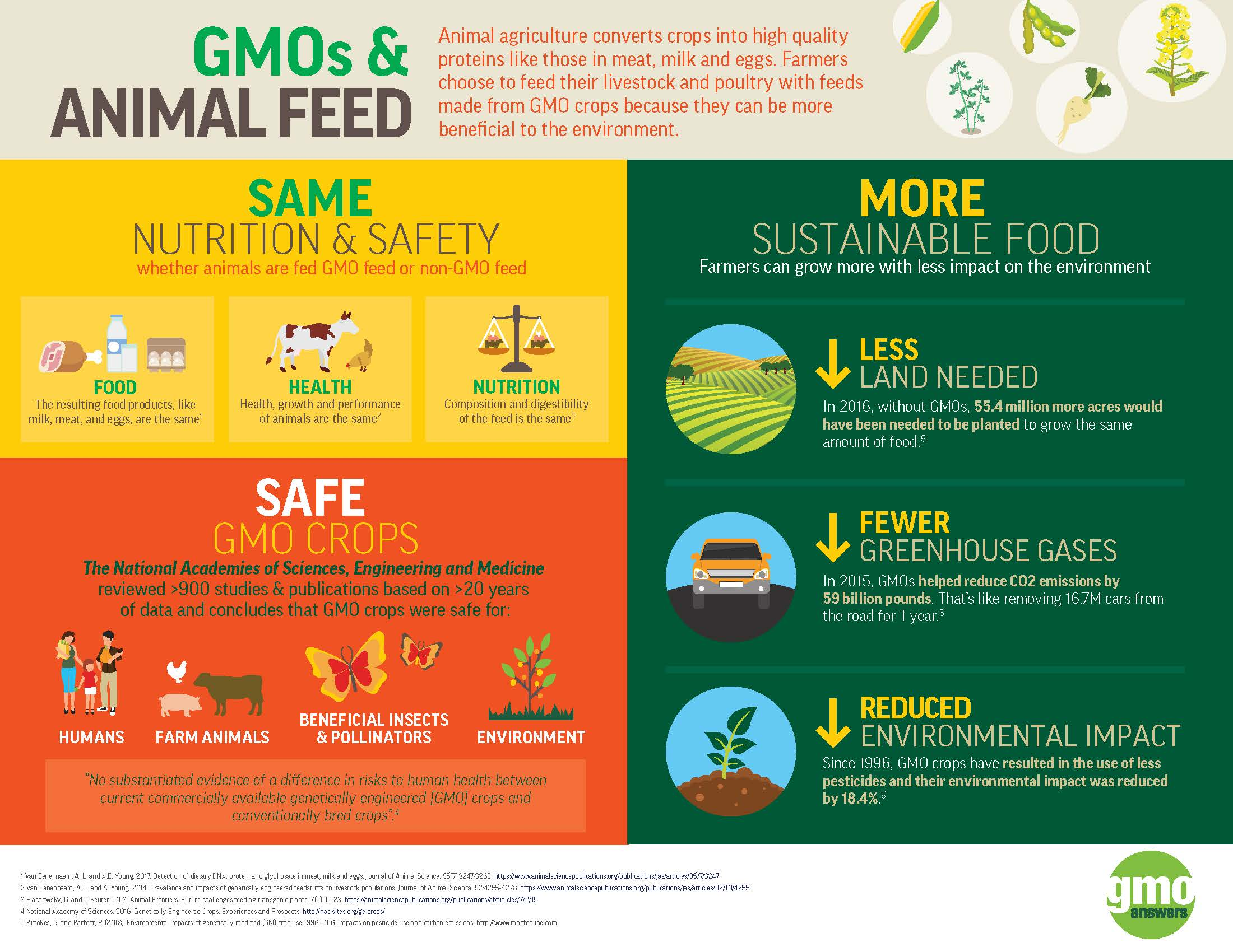 GMOs in animal feed are safe for animals and humans