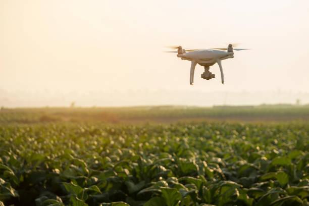 Drone use in farming