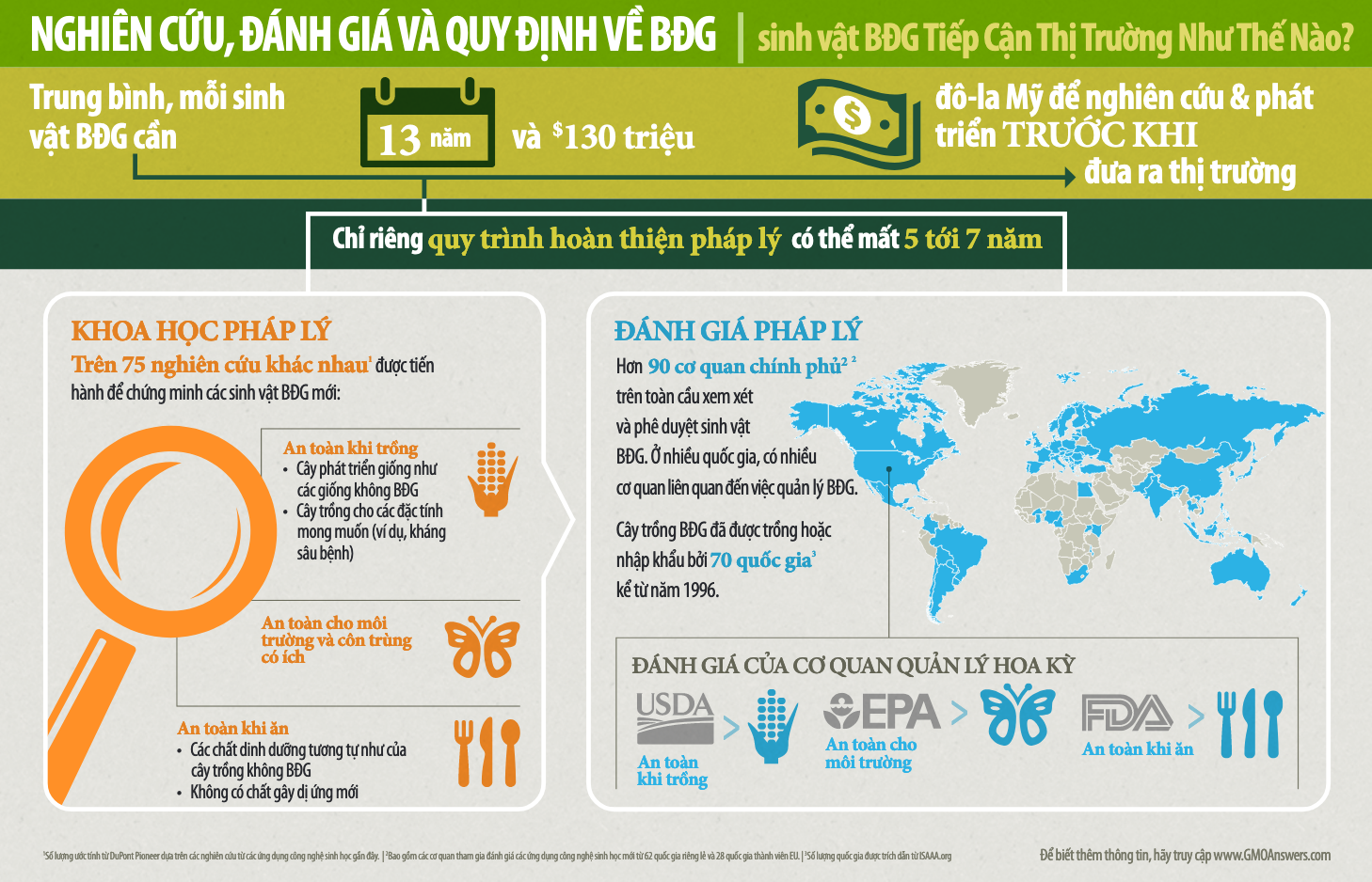 Infographic GMO Research Review and Regulations