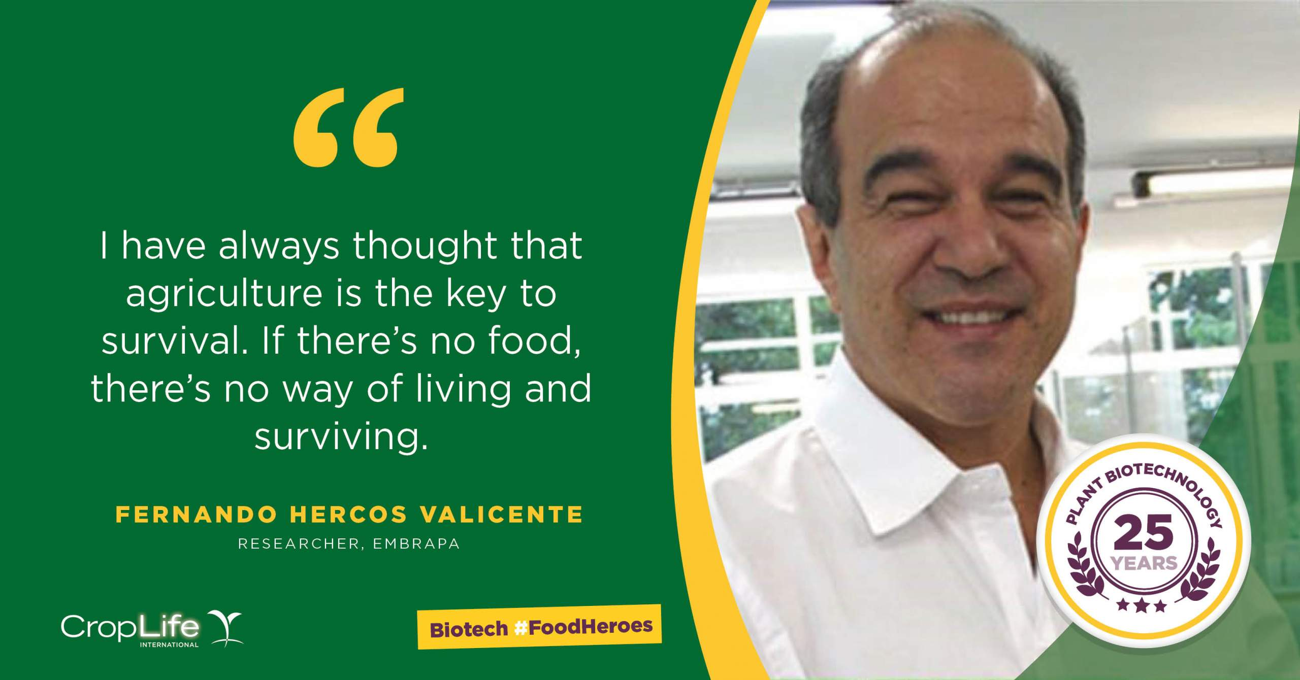 Fernando Hercos Valicente