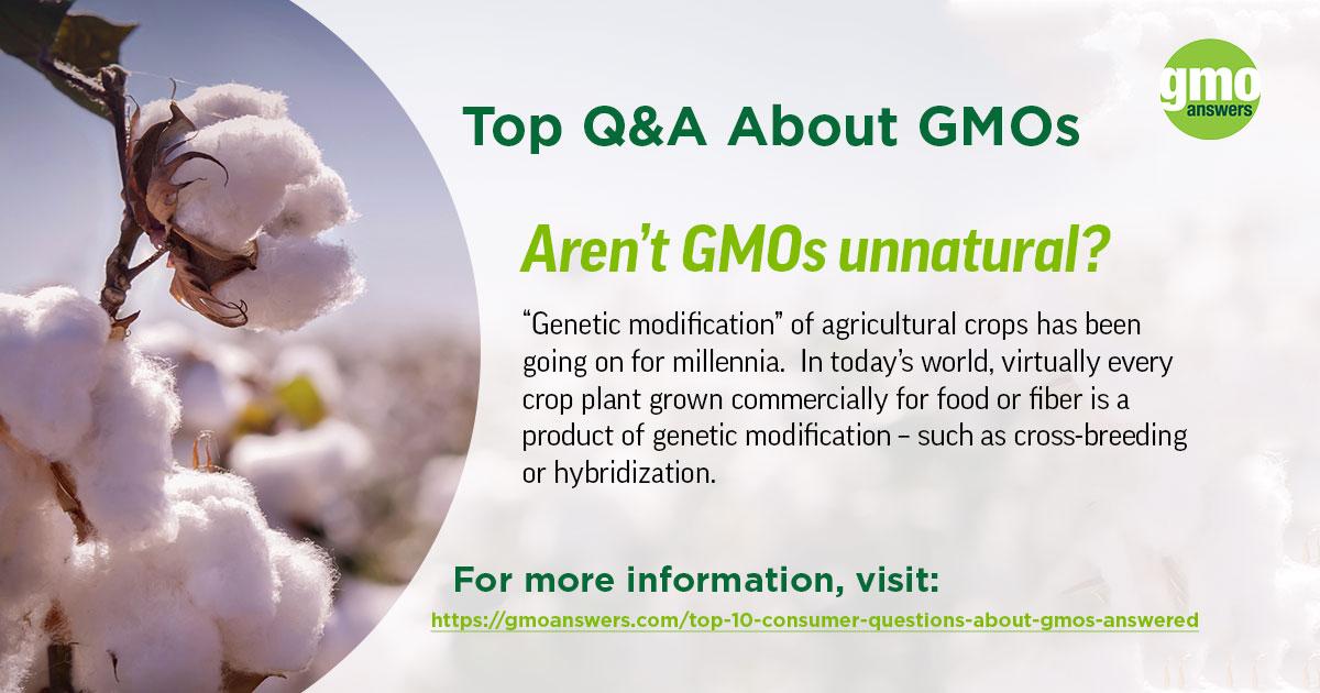 Aren't GMOs unnatural?