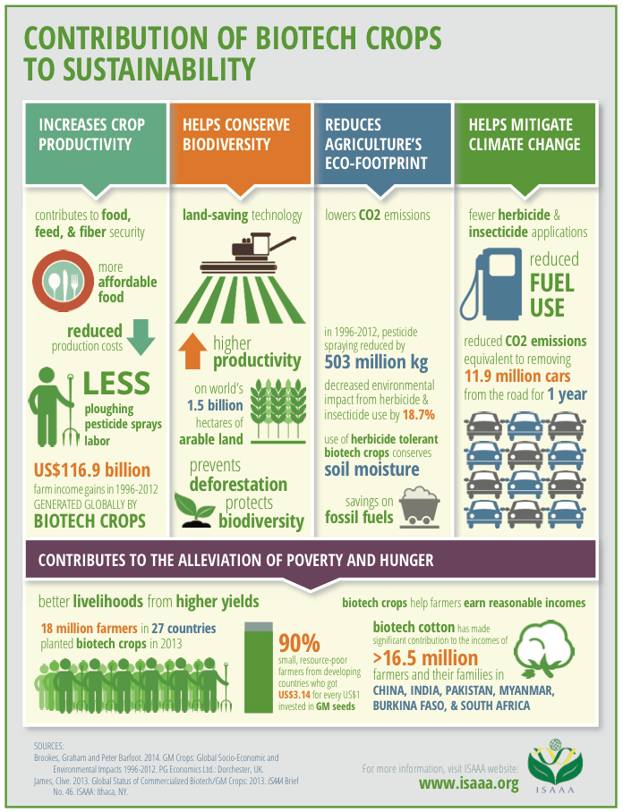 biotech crops infographic