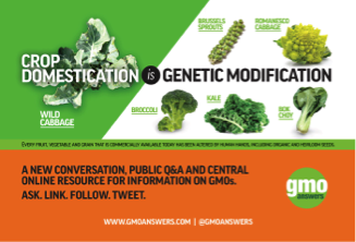 Crop Domestication is Genetic Modification