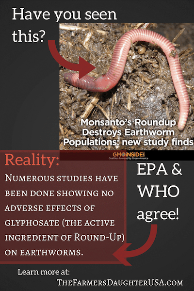 Effects of GMOs on earthworms