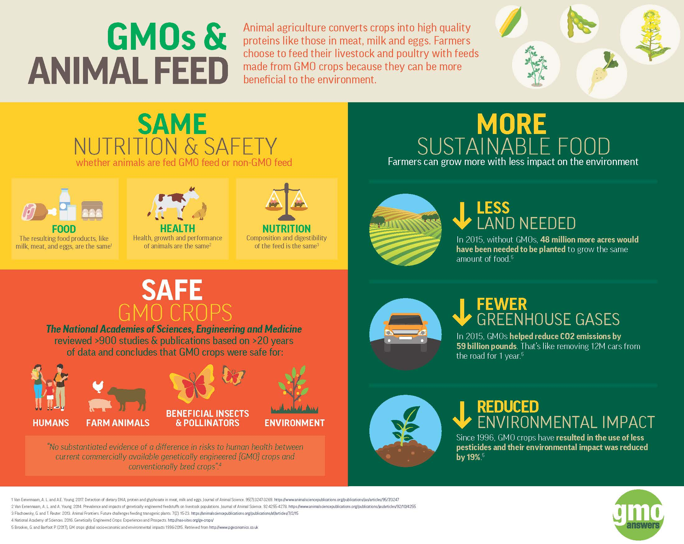GM Crops_Animal Feed_Infographic_5