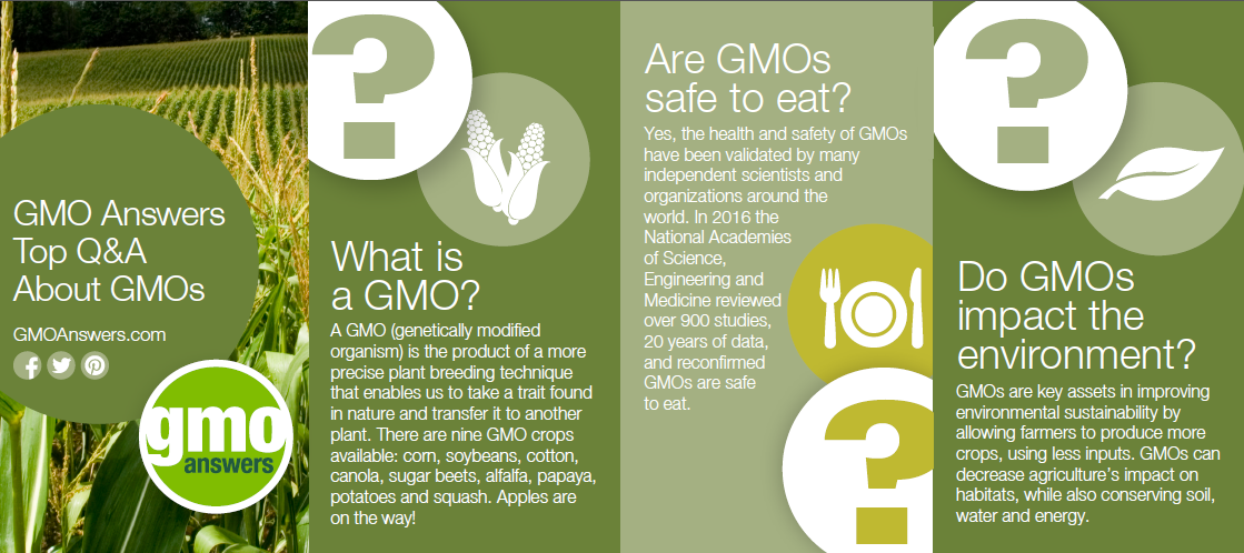 GMO Answers Top Questions About GMOs