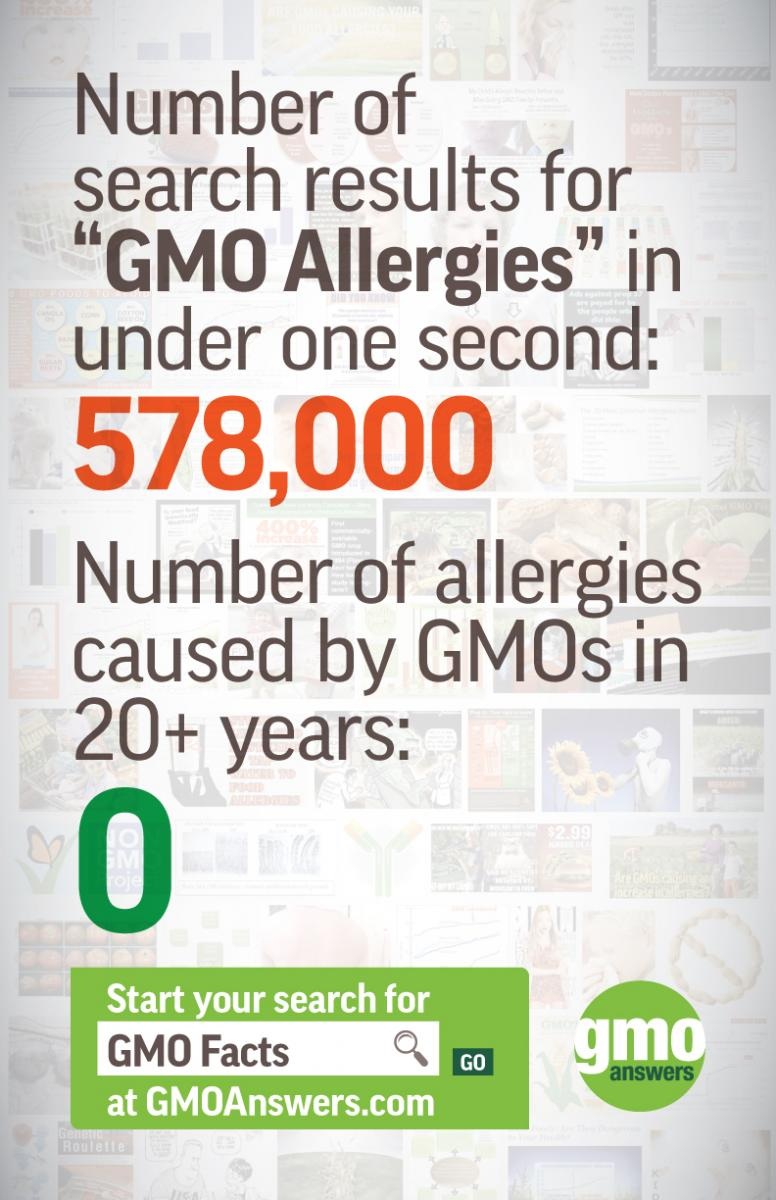 gmos and allergies