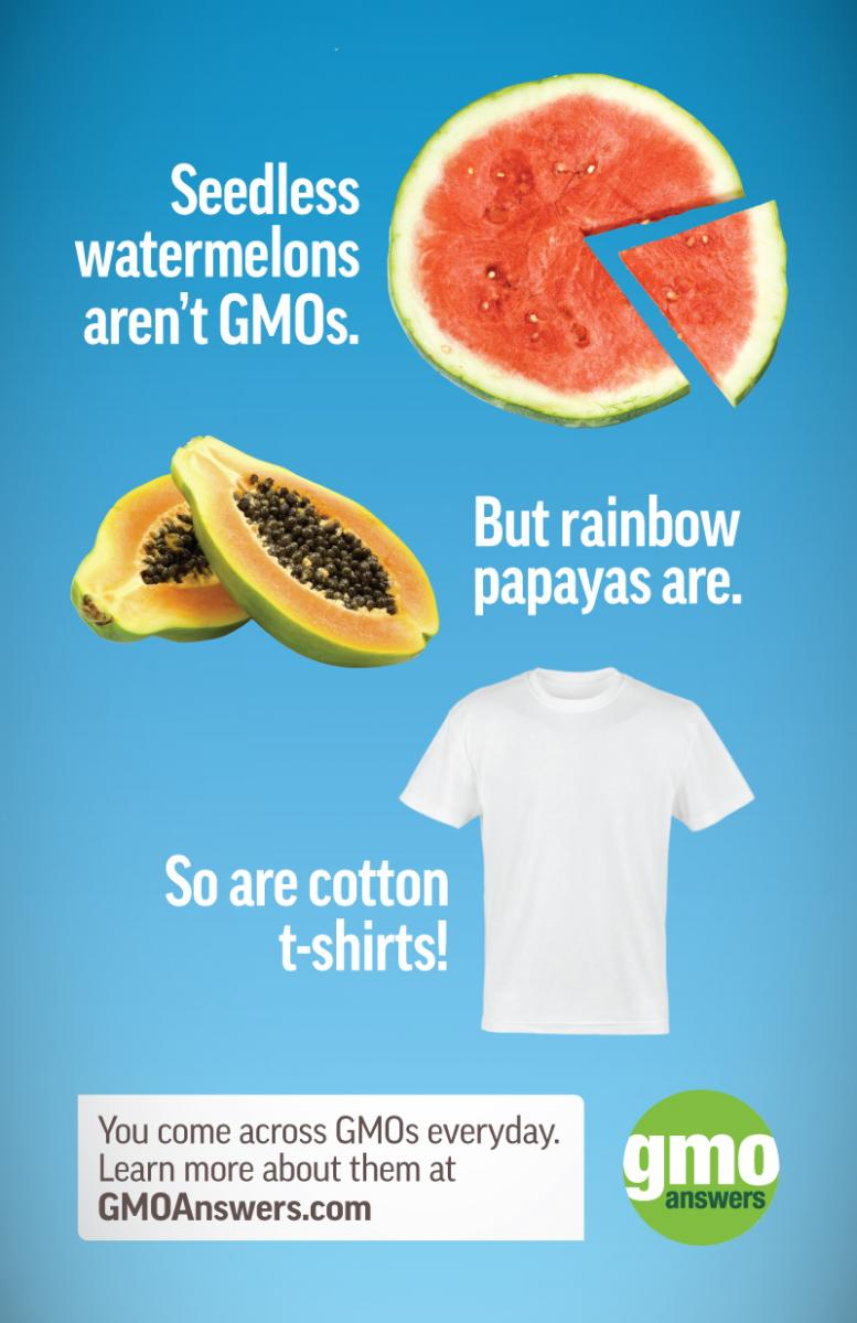 seedless watermelons gmos