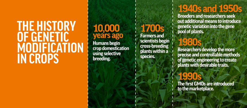 History of Genetic Modification of Crops