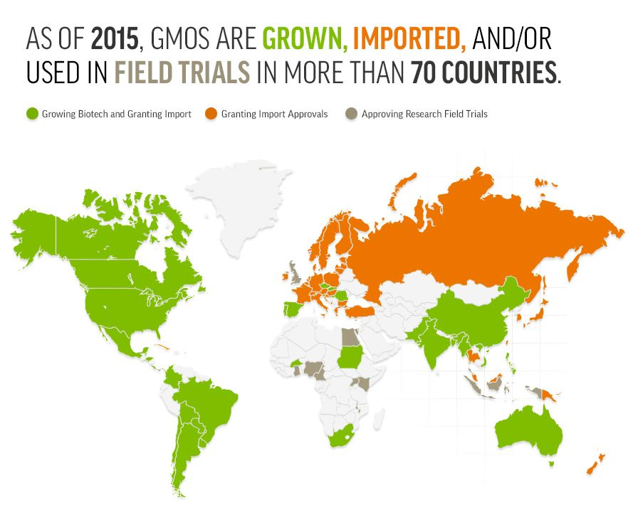 Global Approvals of GMO Crops | GMO Answers