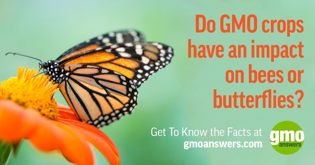 Nationwide Claims Number >> Top 10 Consumer Questions About GMOs, Answered | GMO Answers