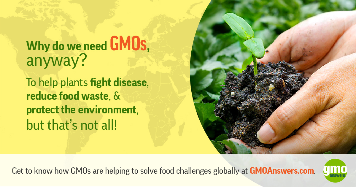 SOCIAL TILE: Get to Know GMOs