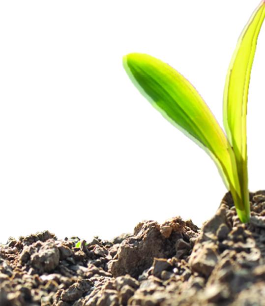Master answers | GMO Answers