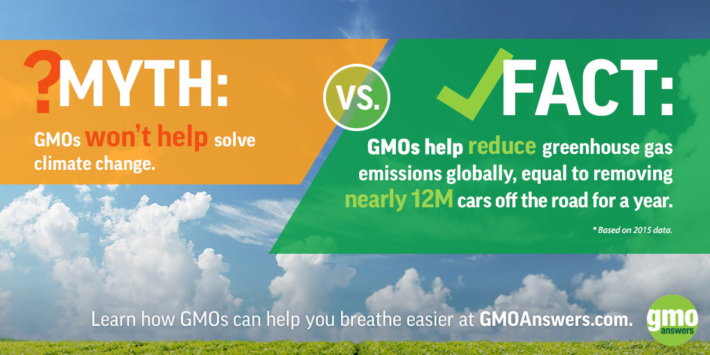 debate on gmo Gmos are not only controversial among consumers, but experts, too check out where scientists stand in the gmo debate according to their field.