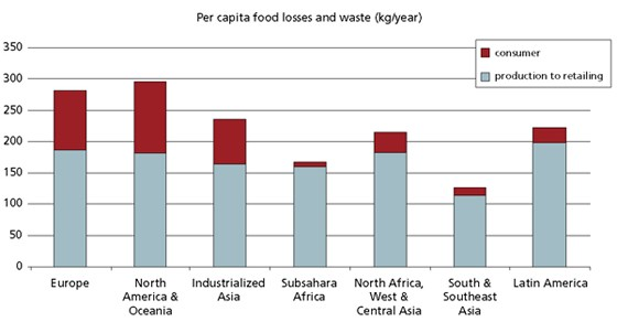 Per capita food losses and waste, at consumption and pre-consumptions stages,  in different regions