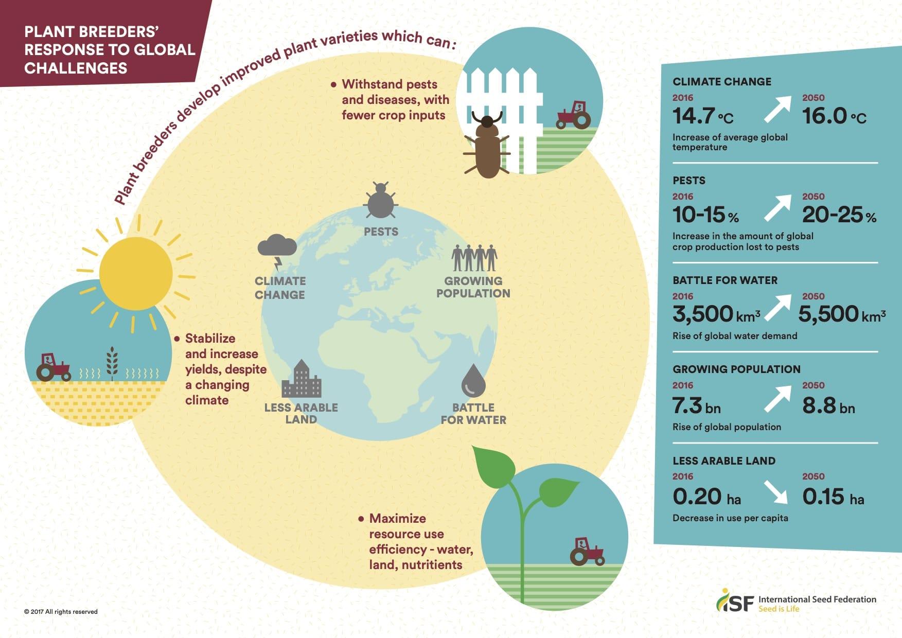 Plant breeding infographic