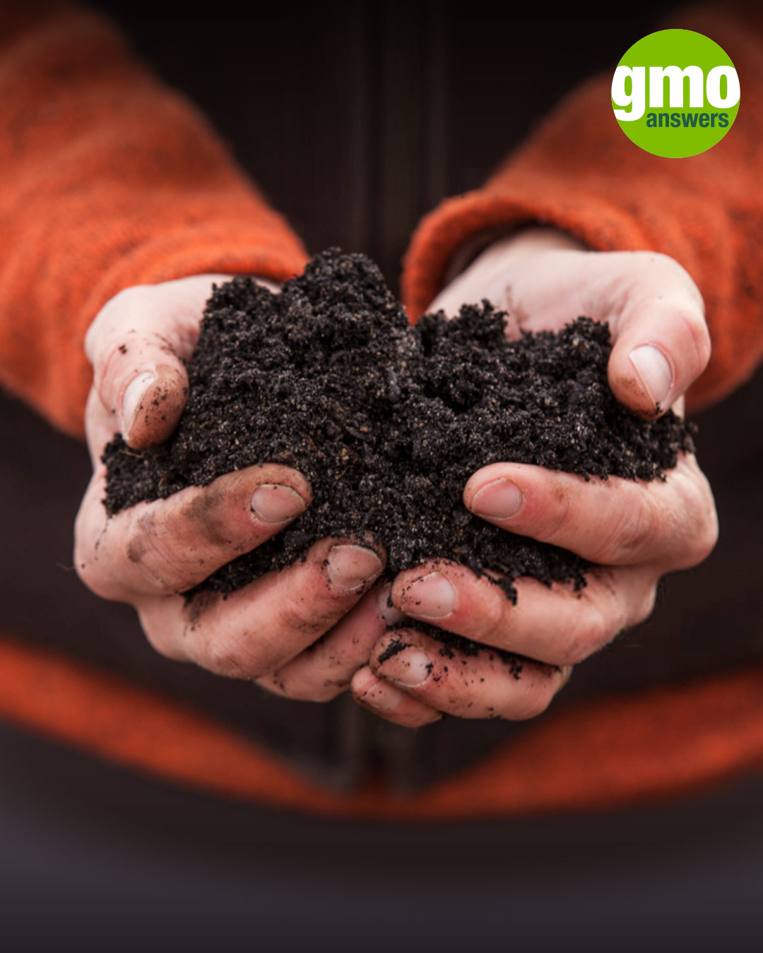 GMOs and soil health