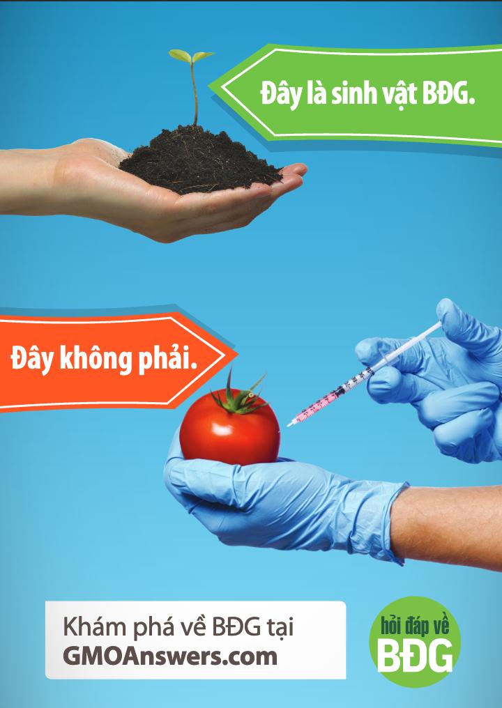 Truth of GMOs