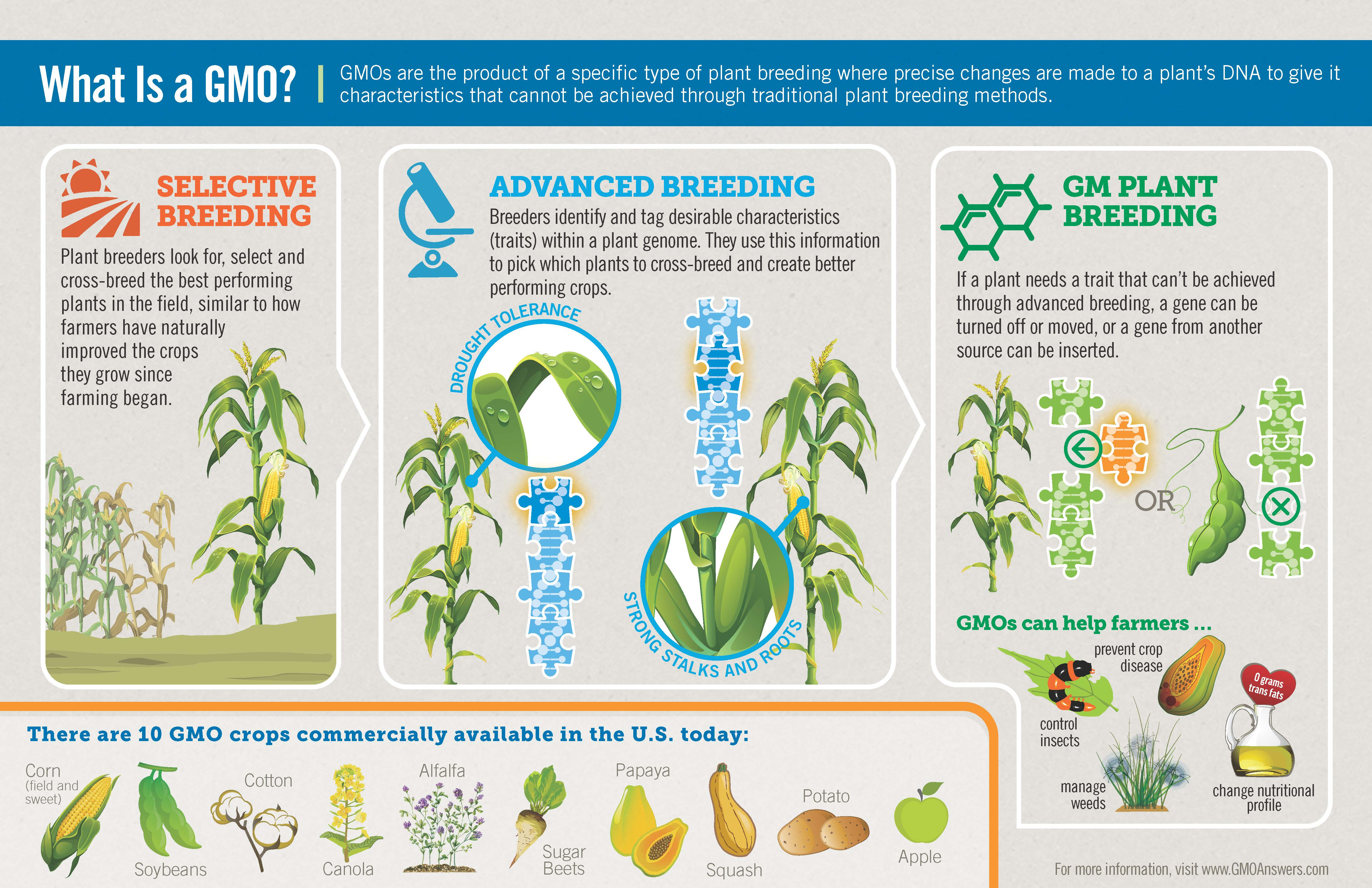 Does Canada Use Gmo Foods