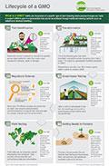 Dispelling Frankenfood Myths Infographic