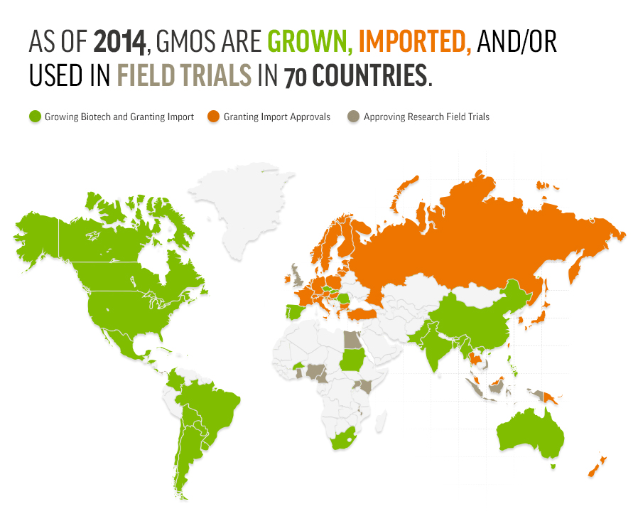 Map: As of 2014, GMOs are grown, imported and/or used in field trials in 70 countries.