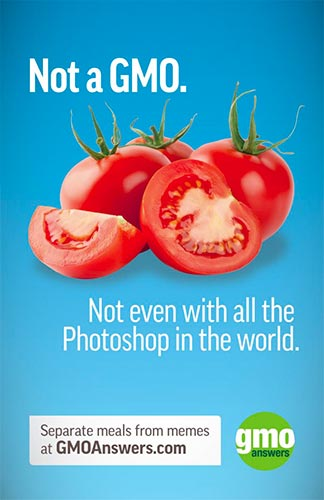 Tomatoes are not a GMO. Not even with all the Photoshop in the world. Separate meals from memes at GMOAnswers.com