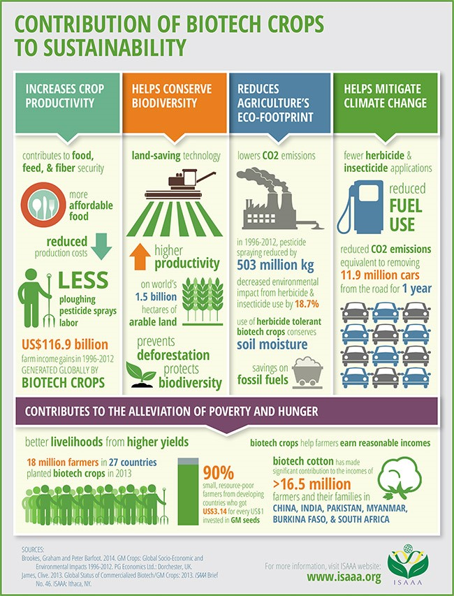 Contribution of Biotech Crops to Sustainability