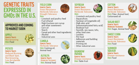 Genetic Traits Expressed in GMOs in the US